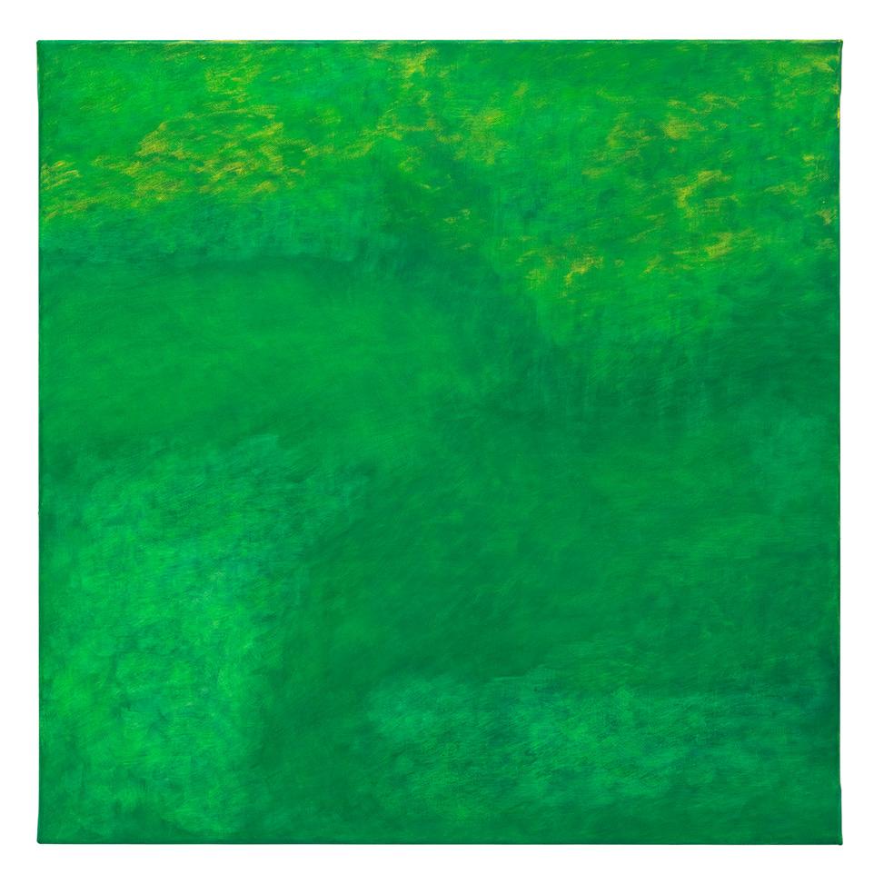 Konkret umhülltes unbestimmtes Grün